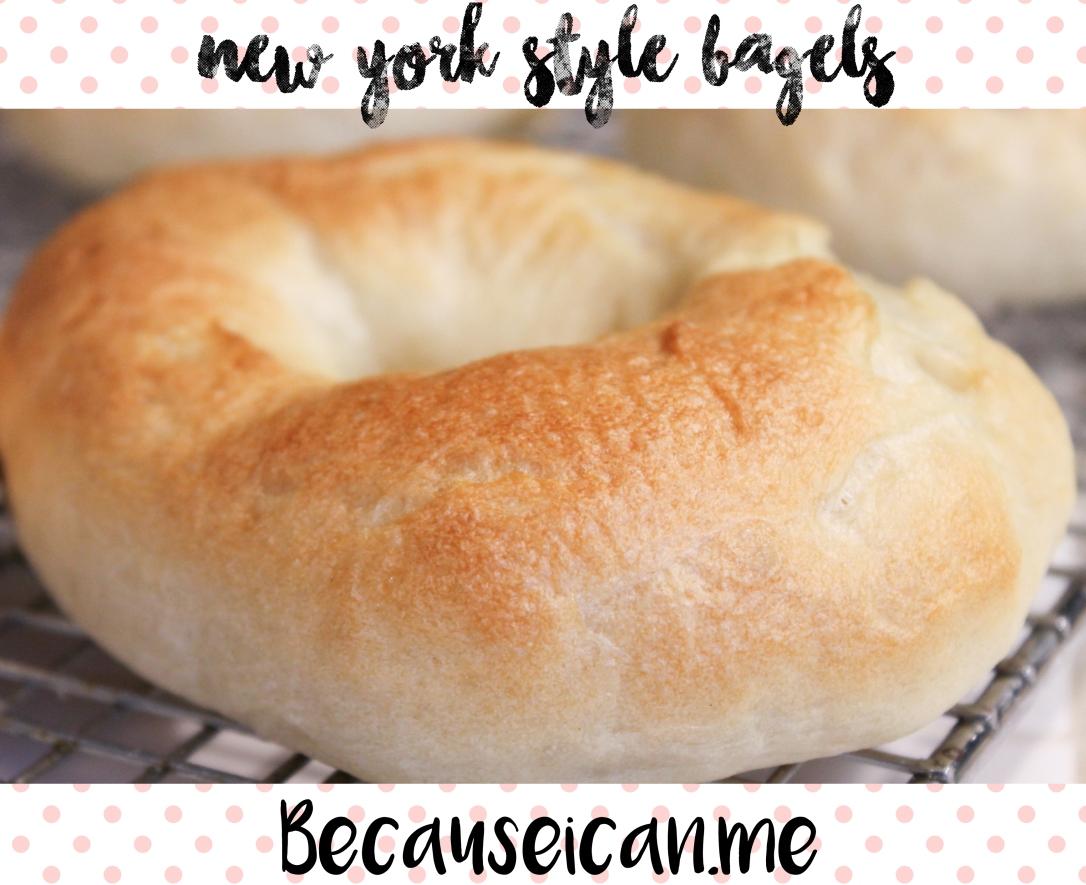 bagels 10new york bagels.jpg