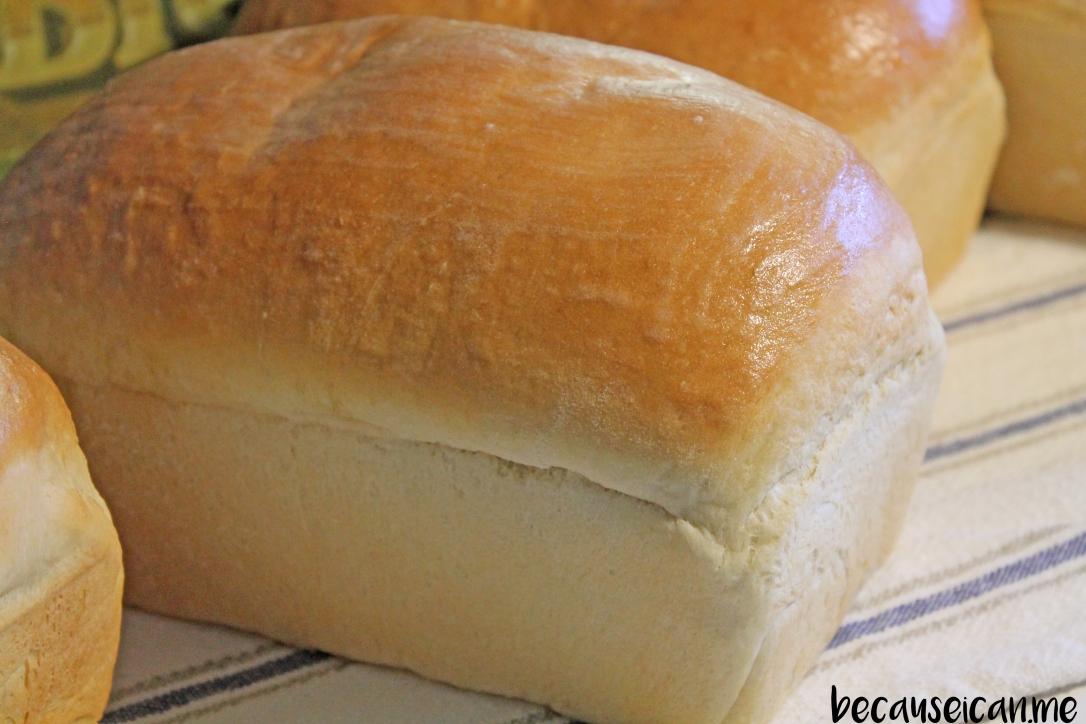 bread-21317