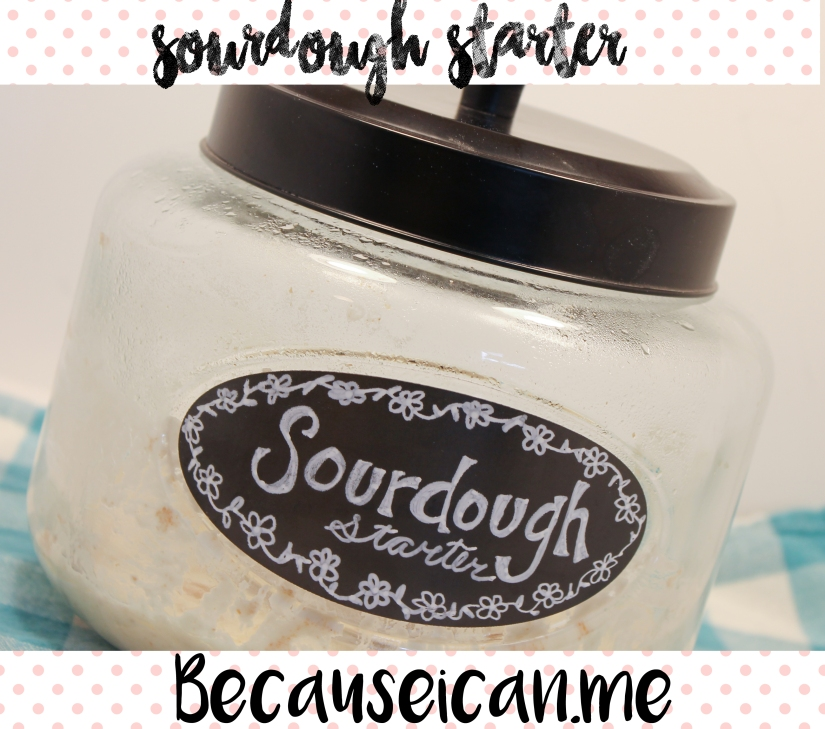 sourdough starter.jpg