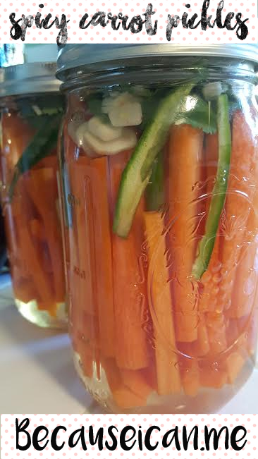 spicy refrigerator carrot pickles